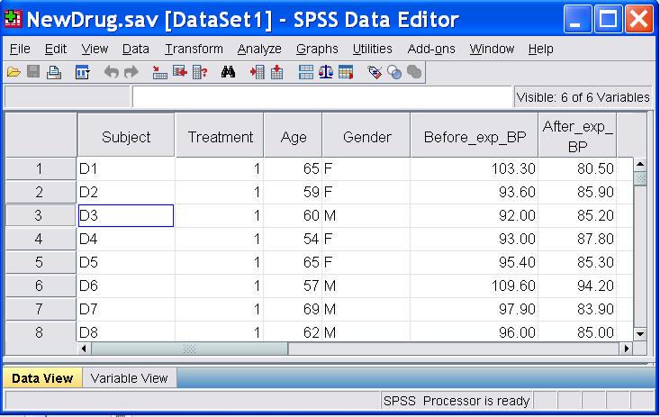 SPSS Tutorials The Data View Window  LibGuides at Kent